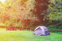 Acampamento na floresta pelo rio Imagem de Stock