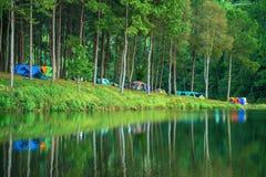 Acampamento na pungência Ung Lago bonito da floresta na manhã Província de Mae Hon fotografia de stock royalty free