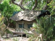 Acampamento na selva Imagem de Stock