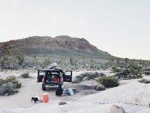 Acampamento no Mojave foto de stock royalty free