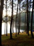 acampar Fotografia de Stock Royalty Free