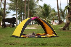 Acampar, barracas no gramado no coco encalha imagens de stock royalty free