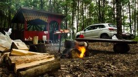 acampar Recreação no lago Floresta 100 video estoque
