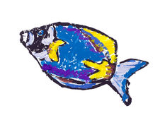 Acanthur painted abstract fish Stock Images