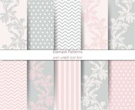 Acanthus leaf pattern classic set Vector. Baroque ornament decor. Vintage background. Pastel color fabric textures. Acanthus leaf pattern classic set Vector Royalty Free Stock Images