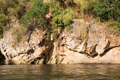 Acantilado adyacente del río Imágenes de archivo libres de regalías