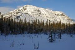 Acantilado carelio del invierno Foto de archivo