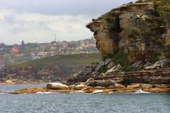Acantilado de la roca fotos de archivo libres de regalías