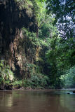 Acantilado de la roca en la selva imagenes de archivo