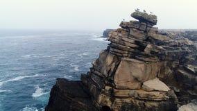 Acantilado de la visión aérea con los pájaros en la costa de Océano Atlántico almacen de metraje de vídeo