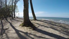 Acantilado de Orchzechowo, en la costa del mar Báltico almacen de metraje de vídeo