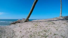 Acantilado de Orchzechowo, en la costa del mar B?ltico almacen de metraje de vídeo