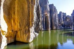 Acantilado de piedra en el bosque de piedra Fotografía de archivo libre de regalías