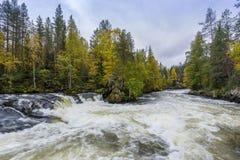 Acantilado, pared de piedra, bosque, cascada y opinión salvaje del río en otoño Imagenes de archivo