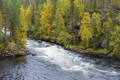 Acantilado, pared de piedra, bosque, cascada y opinión salvaje del río en otoño Imagen de archivo libre de regalías