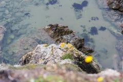 acantilado peligroso en la playa de Annestown Imagenes de archivo