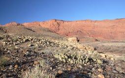 Acantilados Barranca-Bermellones yermo, Utah, los E.E.U.U. de Paria Foto de archivo libre de regalías