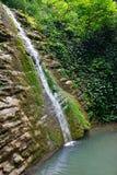 Acantilados boscosos demasiado grandes para su edad con la hiedra y el musgo con la cascada que fluye abajo Fotografía de archivo