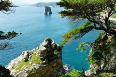 Acantilados costeros con los árboles de pino y una roca separada en el mar fotografía de archivo