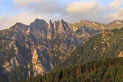 Acantilados de la montaña del verano en salida del sol con el bosque del pino imagen de archivo libre de regalías