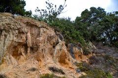 Acantilados de la piedra arenisca que erosionan de las granjas de La Jolla imagenes de archivo