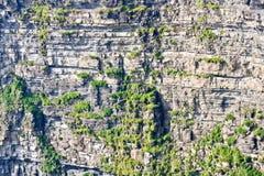 Acantilados de Moher, foto de la formación de roca, condado Clare, Irlanda del detalle Foto de archivo libre de regalías