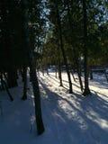 Acantilados del lago Michigan en invierno imagen de archivo