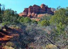 Acantilados del rojo del área de Sedona Arizona Fotografía de archivo libre de regalías