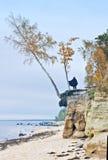Acantilados en la playa báltica, Letonia, Europa Imagen de archivo