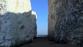 Acantilados y rocas blancos de la tiza en la bahía Inglaterra de la botánica metrajes