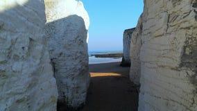 Acantilados y rocas blancos de la tiza en la bahía Inglaterra de la botánica almacen de video