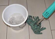 Acari della polvere della Camera Fotografia Stock