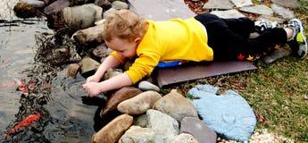 Acariciar pescados Foto de archivo libre de regalías