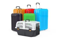 Acaricie la caja plástica del portador de la jaula del viaje cerca de Polyc multicolor grande ilustración del vector