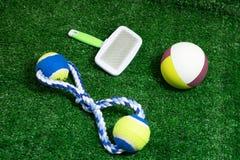 Acaricie los accesorios sobre bola, cepille y rope los juguetes para el perro Imagen de archivo libre de regalías