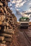Acarree la madera del cargamento en un almacén al aire libre de madera de pino imagen de archivo