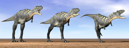 Acasaurus dinosaurs in the desert - 3D render Stock Image