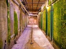 Acatraz Durchgang Lizenzfreie Stockfotos