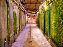 Acatraz passageway Royalty Free Stock Photos