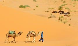 Accampamento del deserto Fotografie Stock