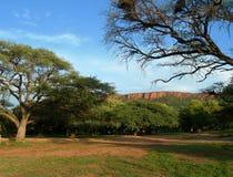 Accampamento nel Namibia, Africa fotografia stock