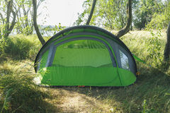 Accampandosi e tenda sotto l'abetaia Fotografia Stock