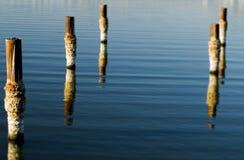 Accatastamenti del mare di Salton Fotografie Stock Libere da Diritti