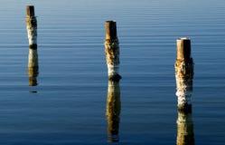 Accatastamenti del mare di Salton Immagine Stock