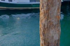 Accatastamento di legno decomposto del pilastro immagine stock libera da diritti