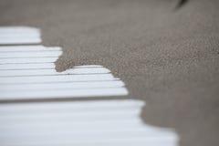 Accatasti la linea costiera fine della spiaggia di sabbia sulla strada bianca di legno isolata Fotografia Stock