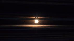 Accenda dalla lampadina su vecchio fondo di legno scuro Immagine Stock