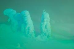 Accenda dei mostri della neve alla montagna di Zao, Giappone Fotografie Stock Libere da Diritti