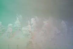 Accenda dei mostri della neve alla montagna di Zao, Giappone Fotografia Stock Libera da Diritti