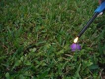Accensione del fuoco d'artificio Fotografie Stock Libere da Diritti